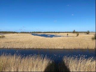 Uitzicht vanaf het Baak (foto door Suzette)