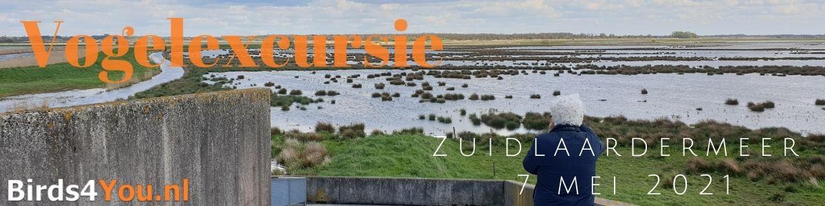 Vogelexcursie Zuidlaardermeer 7 mei 2021
