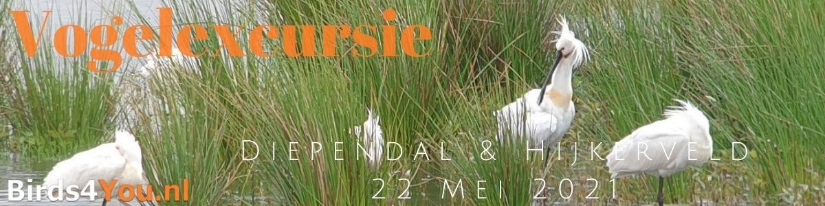 Vogelexcursie Diependal & Hijkerveld 22 mei 2021