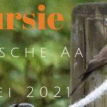 Verslag Privé vogelexcursie Drentsche Aa 23-5-21