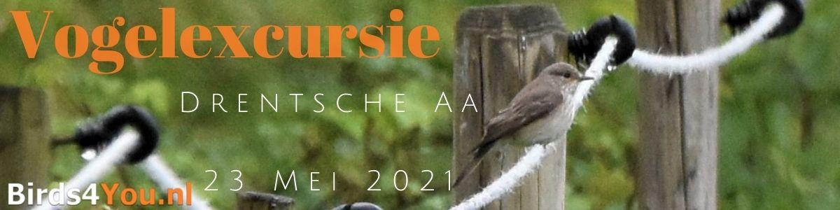 Vogelexcursie Drentsche Aa 23 mei 2021