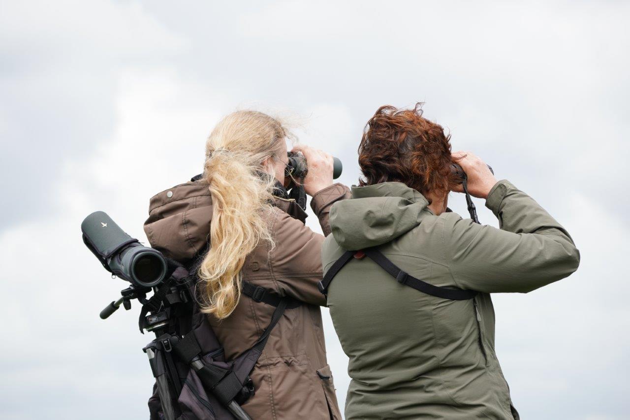 Dames op zoek (foto door Marcel)