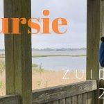 Verslag Privé vogelexcursie Zuidlaardermeer 27-5-2021
