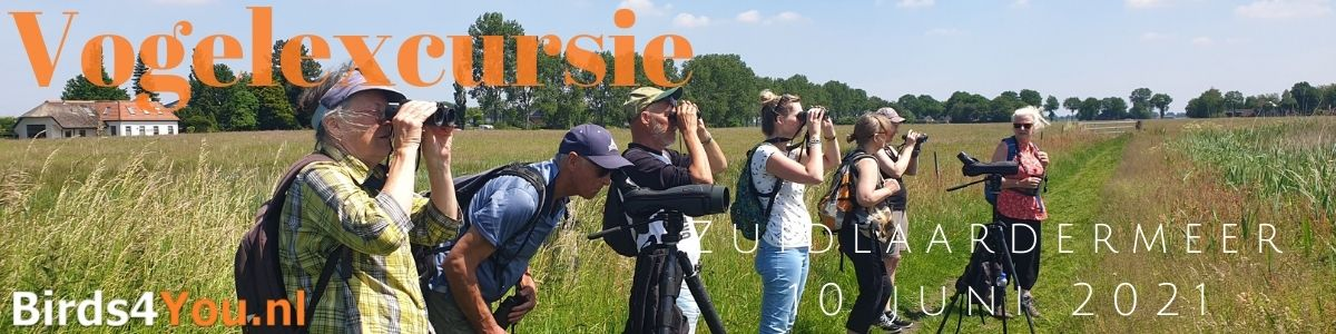 Groeps Vogelexcursie Zuidlaardermeer 10 juni 2021