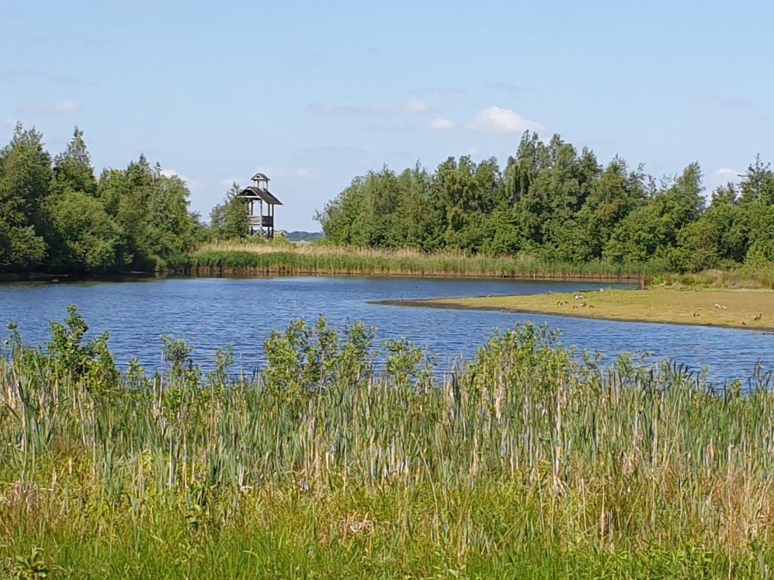 Uitkijktoren bij Leinwijk