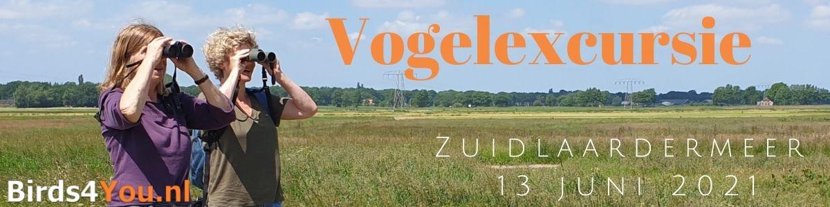Vogelexcursie Zuidlaardermeer 13 juni 2021