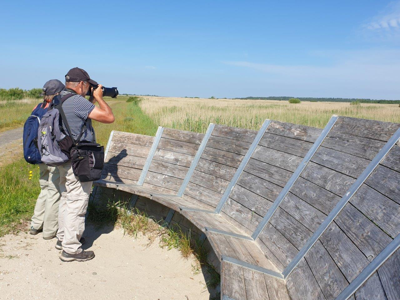 Rietvogels fotograferen