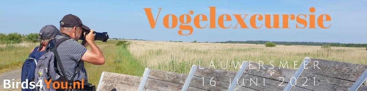 Vogelexcursie Lauwersmeer 16 juni 2021