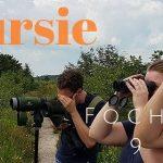 Verslag van de Privé vogelexcursie Fochteloërveen op 9 juli 2021