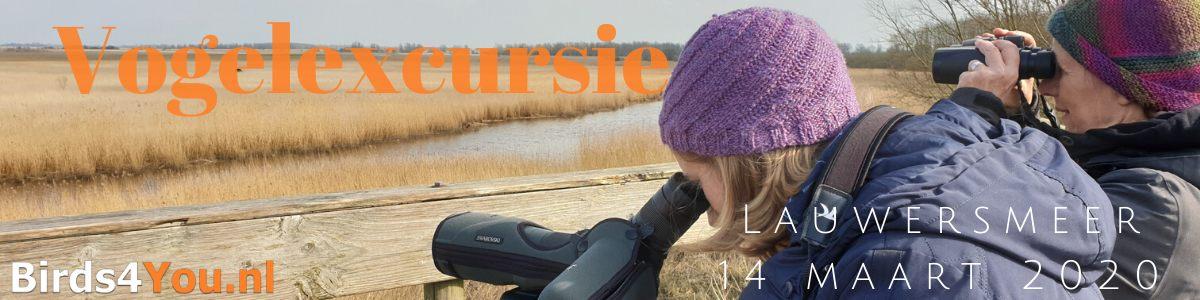 Vogelexcursie Lauwersmeer 14 maart 2020