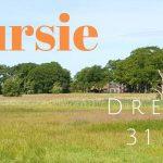 Verslag Privé vogelexcursie Drentsche Aa 31 mei 2020