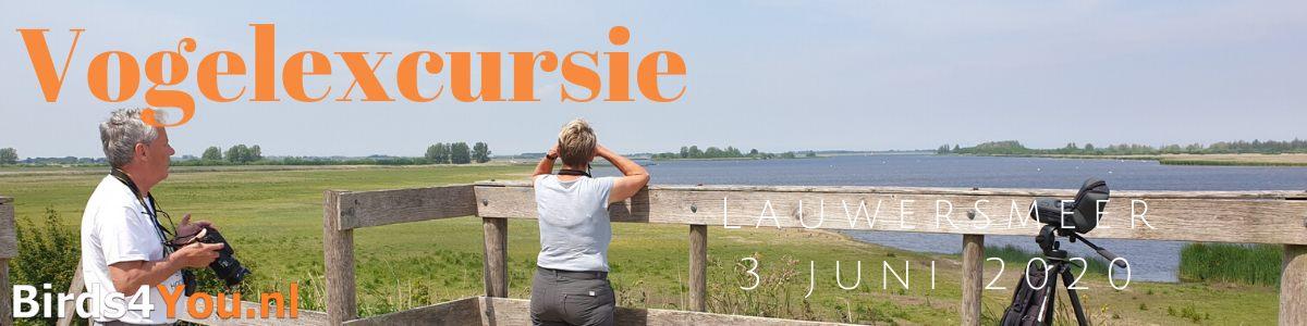 Vogelexcursie Lauwersmeer 3 juni 2020