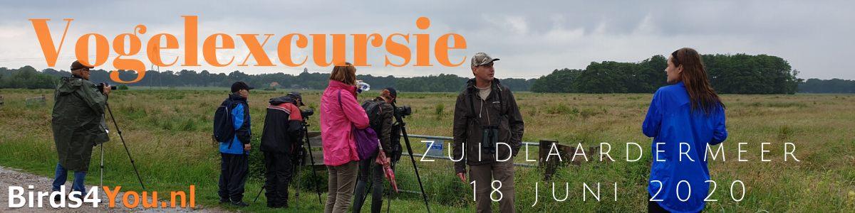Vogelexcursie Zuidlaardermeer 18 juni 2020