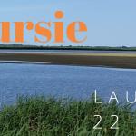 Verslag Privé vogelexcursie Lauwersmeer 22 juni 2020