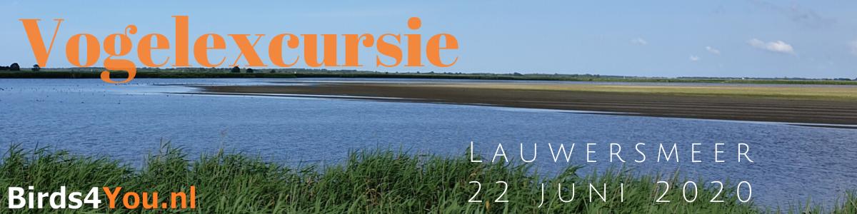 Vogelexcursie Lauwersmeer 22 juni 2020