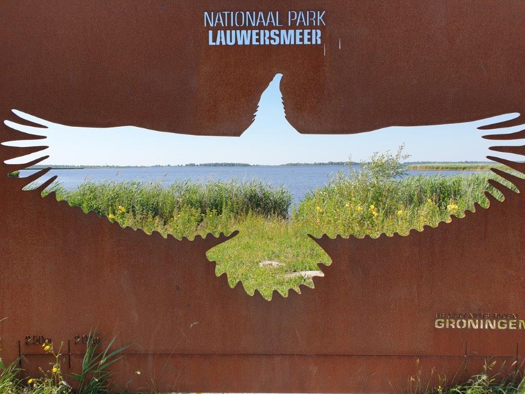 Verslag Privé vogelexcursie Lauwersmeer 25 juni 2020