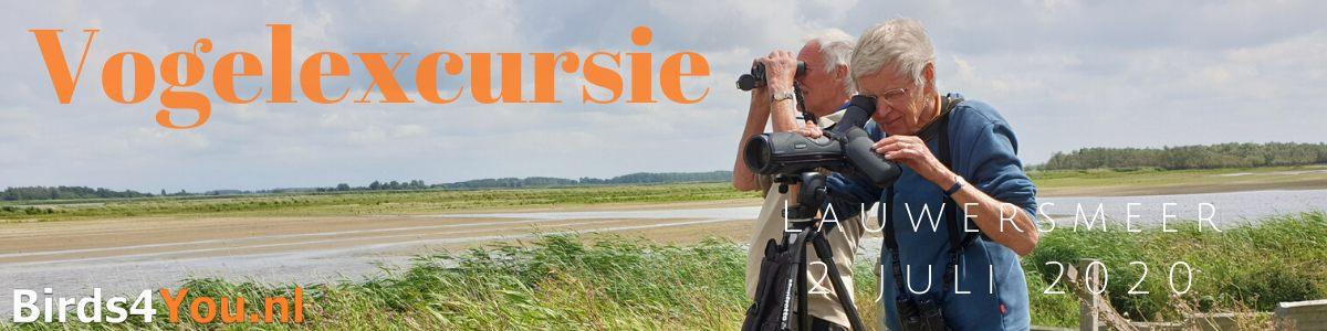 Vogelexcursie Lauwersmeer 2 juli 2020