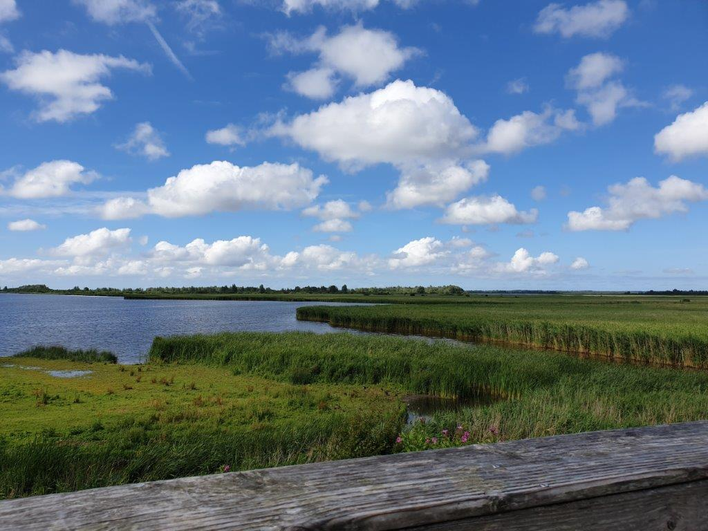 Mooi uitzicht in het Lauwersmeer