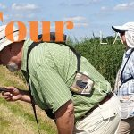 Private Birding Tour Lauwersmeer & Zuidlaardermeer 13-7-20