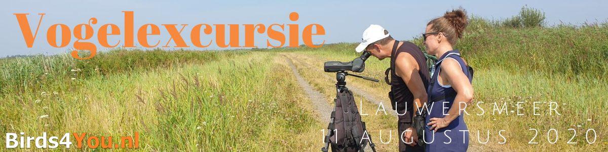 Vogelexcursie Lauwersmeer 11 augustus 2020