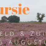 Verslag Privé vogelexcursie Hijkerveld & Zuidlaardermeer 16-8-20