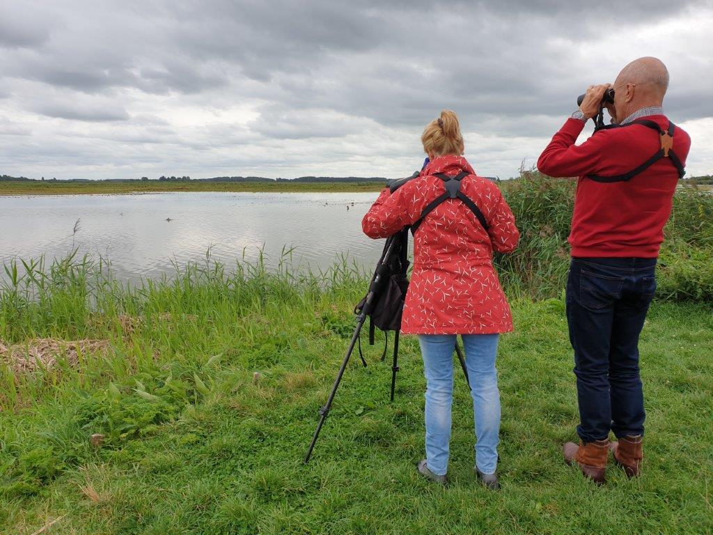Kijken in Friesland