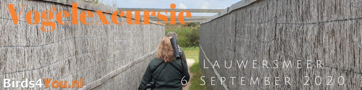 Vogelexcursie Lauwersmeer 6 September 2020