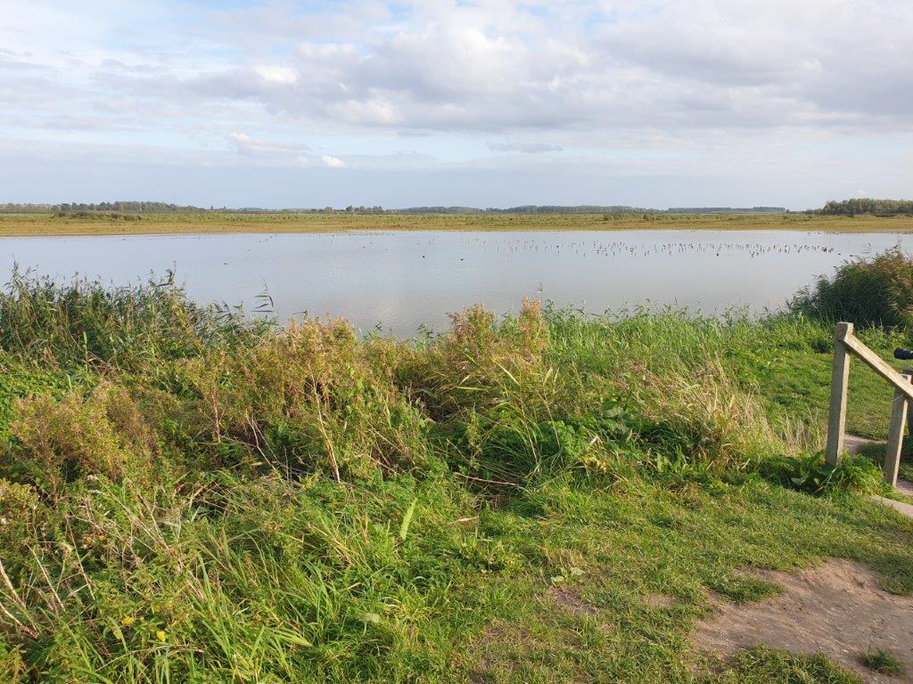 Uitzicht in Friesland
