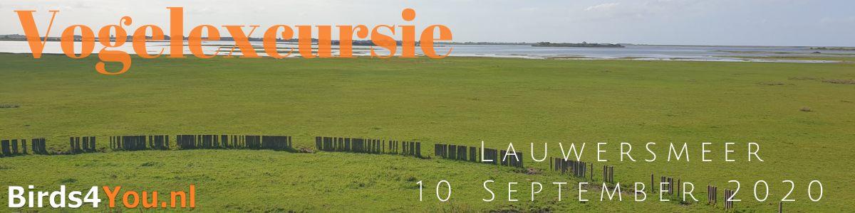 Vogelexcursie Lauwersmeer 10 September 2020