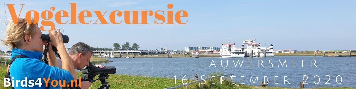Vogelexcursie Lauwersmeer 16 September 2020