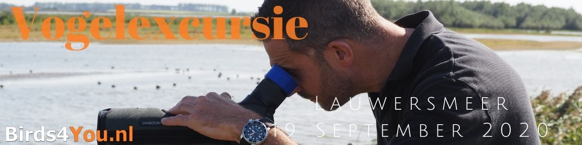 Vogelexcursie Lauwersmeer 19 September 2020