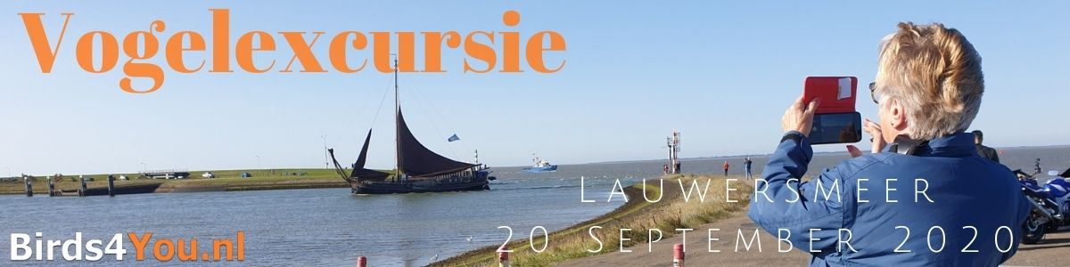 Vogelexcursie Lauwersmeer 20 September 2020