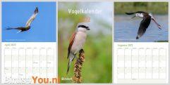 kalender vogelkalender 2022