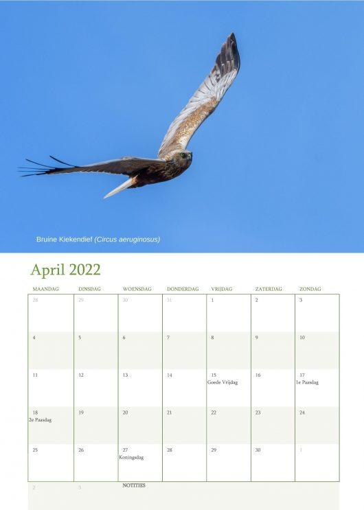 Vogelkalender 2022 April