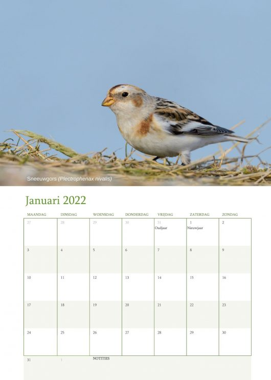 Vogelkalender 2022 Januari