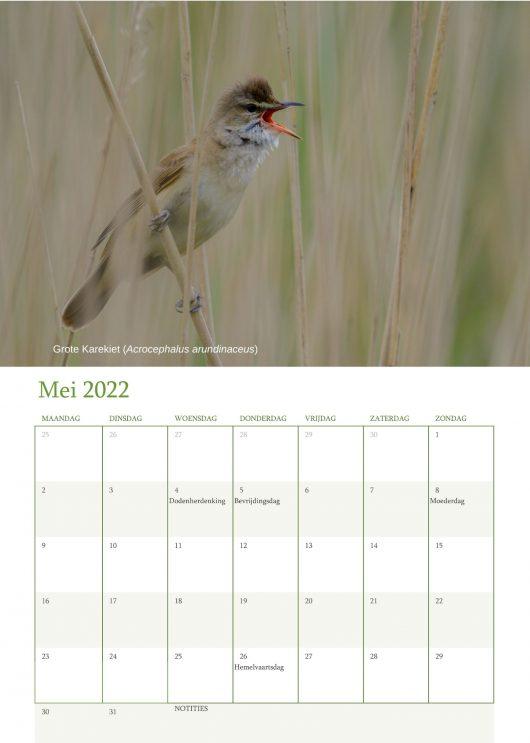 Vogelkalender 2022 Mei