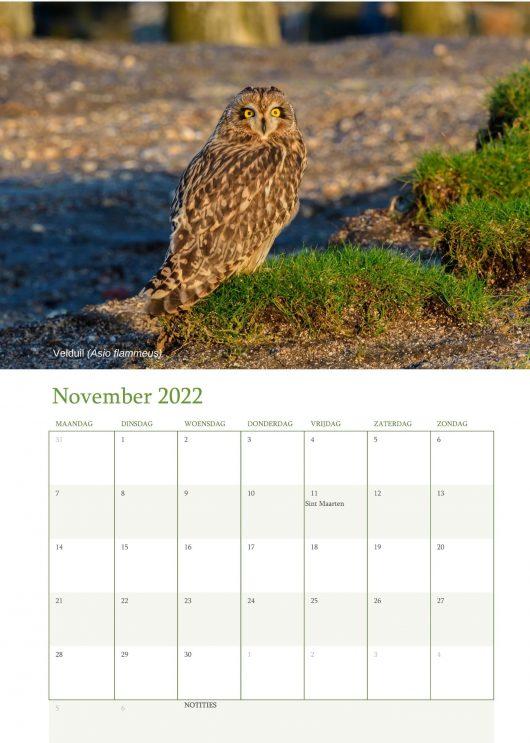 Vogelkalender 2022 November
